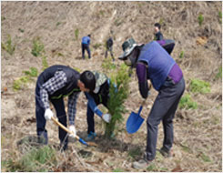 3. 30 제73회 식목일 나무심기 행사 참여